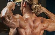 Тренировка задних дельт. Базовые упражнения и ошибки.