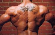 5 базовых упражнений на широчайшие мышцы спины. Техника и ошибки.